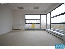 Pronájem, kancelář, 222 m²